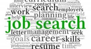 Junior Professional Job Search Workshop