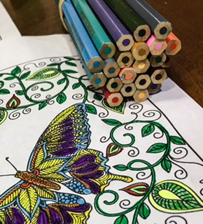 Outdoor Adult Coloring Group